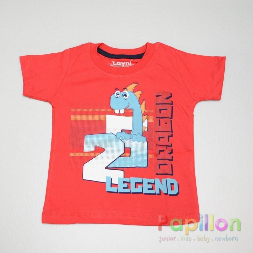 Μπλούζα 760 αγόρι (1-5 ετών)